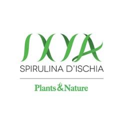 Shampoo detox ixya