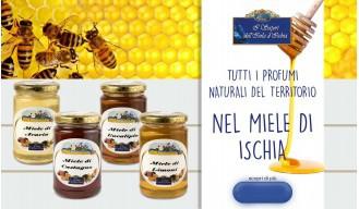 Banner miele